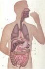 Месячник «Профилактика заболеваний органов пищеварения»
